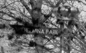 Naamsverandering naar Wilhelminapark